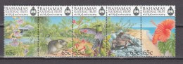 Bahamas 1999, 5V In Strip,birds,vogels,vögel,oiseaux,pajaros,uccelli,aves,rat,flowers,bloemen,blumen,MNH/Postfris(L2514) - Vogels