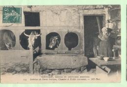 COUTUMES, MOEURS, ET COSTUMES BRETONS , Intérieur Ferme Bretonne ,Chambre Et Etabls Communes - Bretagne