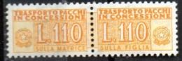 PIA - Specializzazione  :1960 :  PACCHI CONCESSIONE : £ 110 - (SAS 13 - CAR 15) - 6. 1946-.. Repubblica