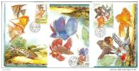 4 Cartes Maximum 2003 Poissons D' Aquarium Maximum Card Fishes - FDC