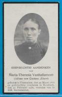 Bidprentje Van Maria-Theresia Vanhellemont - Vissenaken - Roosbeek - 1866 - 1930 - Images Religieuses