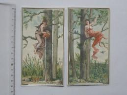 CHROMO GRAND FORMAT: Demoiselle Avec Oiseaux Dans La Forêt - Lot De 2 Même Série (N° 255)- Fillette - Chromos