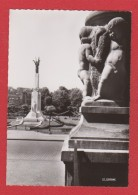 Sarreguemines  --  Monument Aux Morts - Sarreguemines