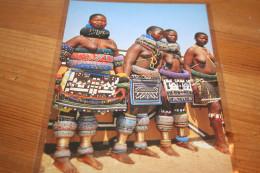 CPM Afrique Du Sud  Jeunes Femmes Filles Seins Nus Nu Nude Tribu Ndebele 426 - Afrique Du Sud, Est, Ouest