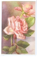 CHIOSTRI  - EDIT BALLERINI & FRATINI 1930s/40s - FLOWER - ROSES - N.9017 ( C ) - Chiostri, Carlo