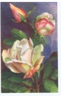 CHIOSTRI  - EDIT BALLERINI & FRATINI 1930s/40s - FLOWER - ROSES - N.9017 ( F ) - Chiostri, Carlo