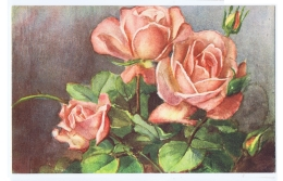 CHIOSTRI  - EDIT BALLERINI & FRATINI 1930s/40s - FLOWER - ROSES - N.93 - Chiostri, Carlo