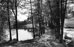 ¤¤  -   12019   -   SAINT-CHRISTOPHE-du-LIGNERON  -  Parc De La Groslière  -   ¤¤ - France