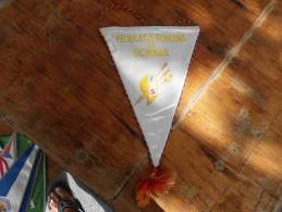 Flags Fencing Federatia Romana De Scrima - Fencing