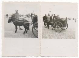 Foto/ Photo. Attelage Sur La Digue D'Ostende ? Knokke ?...?  A Situer. Lot De 2. - Anonieme Personen
