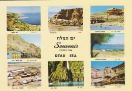 ISRAEL----SOUVENIR From The DEAD SEA--voir  2 Scans - Israel