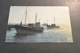 PK395-  La Bretange En Couleurs - Le Guilvinec - Retour Des  Chalutiers - Barche