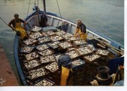 La Bretagne En Couleurs - Retour De Pêche En Bretagne N° 1462 Jos (bateau à Quai) - Visvangst