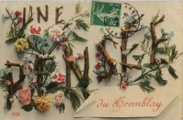 94 LE TREMBLAY UNE PENSEE - Champigny Sur Marne