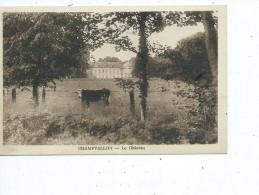 89-CHAMPVALLON-( Senan)-Une Vue Du Chateau - Autres Communes