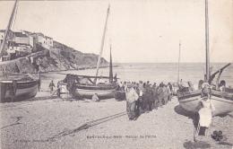CPA Animée (66)  BANYULS Sur MER Retour De Pêche Pêcheurs Métier - Banyuls Sur Mer