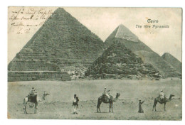 12676 Cpa LE CAIRE / CAIRO , The Thre Pyramids , Les Trois Pyramides , Tres Jolie Carte ! 1908 - Cairo