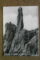 BELLUNO - 1952  - LA GUSELLA DEL VESCOVA' -  BELLISSIMA - Non Classés