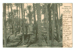 12692 Cpa  LE CAIRE ; MEMPHIS , Fellahin Hut In The Palwood 1905    ACHAT DIRECT !!! - Cairo