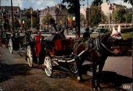 CHEVAUX - ATTELAGE CHEVAUX - PARIS - Fiacre - Pferde