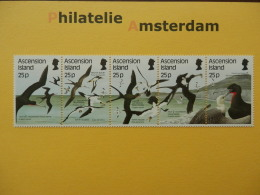 Ascension 1987, FAUNA BIRDS OISEAUX VOGELS VÖGEL AVES: Mi 443-47, ** - Vögel