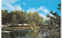 BORDS DE SEINE ( PENICHE ) - Cartes Postales