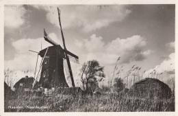 Pays-Bas - Naarden - Naardermeer - Architecture Moulin à Vent - Naarden