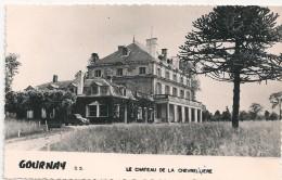 Cpsm 79 Gournay Chateau De La Chevrelière - France