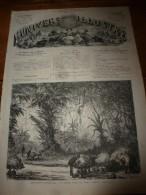 1867 L'UNIVERS Illustré :Nasser-Ed-Din,Shah,Perse,Kasr-i-Kajar (Téhéran);FLORENCE Quai De L'Arno; LUBECK (Puppenbrucke) - 1850 - 1899