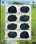 Kyrgyzstan, WWF, 2011, Overprinted, Sheetlet Of 2 Sets Hologramm - W.W.F.