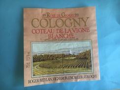 1791 - Suisse Rosé De Gamay 1996 Cologny Côteau De La Vigne Blanche - Etiquettes