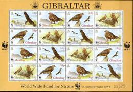 Gibraltar, WWF, Birds, 1996, Sheet Of 4x Block Of 4 - W.W.F.
