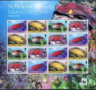 St.Helena, WWF, Island Hogfish, 2012, Sheet 4x4 - W.W.F.