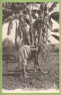 Zambézia - Um Mulher Cavando A Terra - Moçambique - Étnico - Ethnique - Ethnic (Edição Martins E Silva) - Afrique