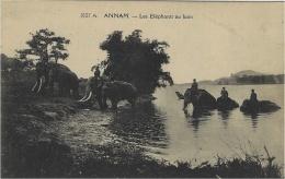 ANNAM - Les Eléphants Au Bain - Elefanti