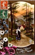 [DC3238] CPA - FLEURS DE FRANCE - Viaggiata - Old Postcard - Fiori