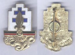 Insigne De La 13e Demi Brigade De La Légion Etrangère - Army