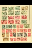 BRITISH AFRICA QV TO KGV USED RANGES ON OLD ALBUM PAGES Duplication And Mixed Condition, But Can See Many Useful... - Stamps