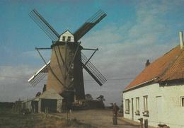 CPM Terdeghem Steenmeulen Ou Moulin St-Arnould 1864 - Steenvoorde