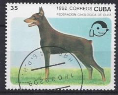 Cuba  1992  Dogs (o) Dobermann - Cuba