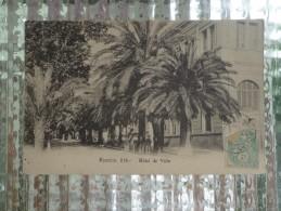 CPA 20 AJACCIO HOTEL DE VILLE PALMIERS - Ajaccio