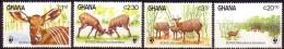 Ghana 1984 Yvertn° 850-853 *** MNH Cote 45 FF Faune WWF Antilopes - Ghana (1957-...)
