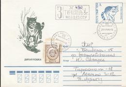 49233- DOMESTIC CAT, COVER STATIONERY, 1994, PMR - Domestic Cats