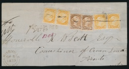 Canada #35, 39 Cvr 1873 Registered Domestic, Mailed From Erinsville UC On SEP.8.1873 To Toronto,... - 1851-1902 Reign Of Victoria
