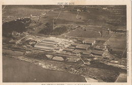 BALARUC LES BAINS - Usine De Saint-Gobain - Francia