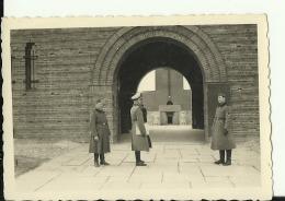 A208  --  DEUTSCHLAND   --  ORIGINAL PHOTO   --   8,5 Cm X 6 Cm  --   TANNENBERG DENKMAL - 1939-45
