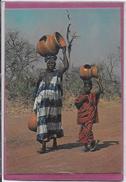 AFRIQUE EN COULEUR .- En Route Pour Le Marché - Cartes Postales