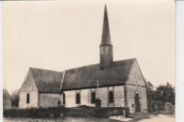 61 - AUGUAISE - L'Eglise - Autres Communes