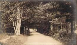 USA - Whitefields - Road To Moutain View House, R. P. (carte Photo) - Etats-Unis