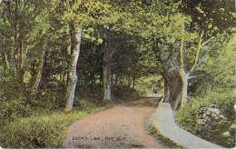 USA - Rye - Lover's Lane - Etats-Unis